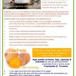 Newsletter Jan 2016 P2