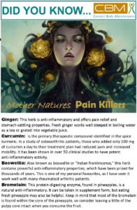 mother nature's Pain Killers
