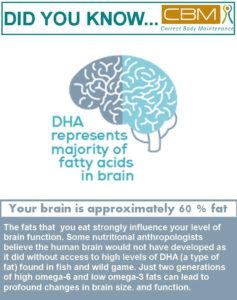 Brain is 60% fat (2)